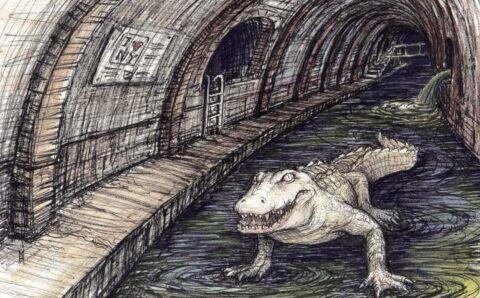 ¿Hay cocodrilos en las alcantarillas de Nueva York?
