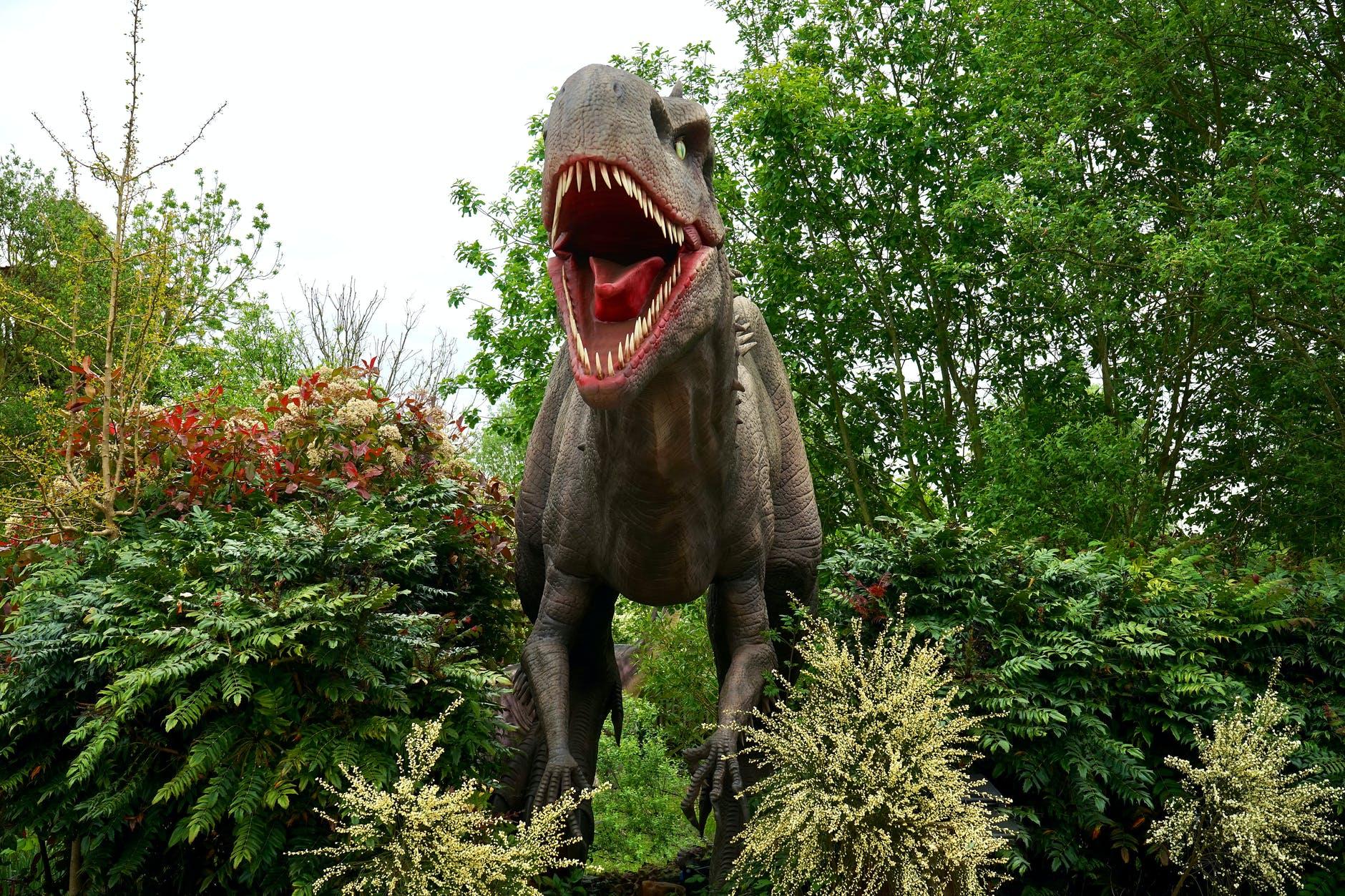 Así evolucionaron los dinosaurios hasta convertirse en aves
